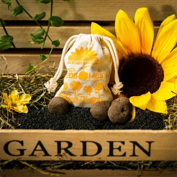 Samenbomben - Sonnenblumen (8 Stück)